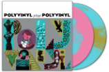 Stream The <em>Polyvinyl Plays Polyvinyl</em> Comp