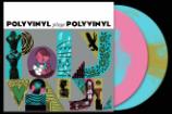 Stream The <em>Polyvinyl Plays Polyvinyl</em> Comp