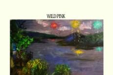 Wild Pink -