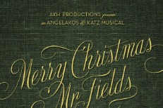 Michael Angelakos - Merry Christmas Mr Fields