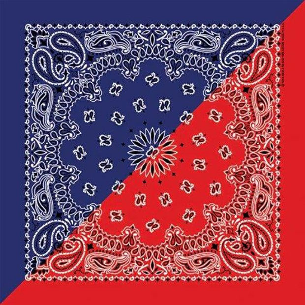 Red And Blue Bandana