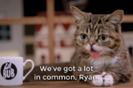 Watch Ryan Adams Get Interviewed By Lil Bub And Write A Song For Her