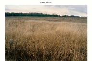 "Sinai Vessel – ""Looseleaf"""