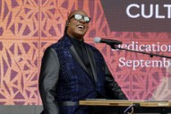 Detroit Street Named After Stevie Wonder