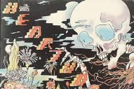 "The Shins – ""Name For You"""