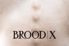 Boss Hog - Brood X