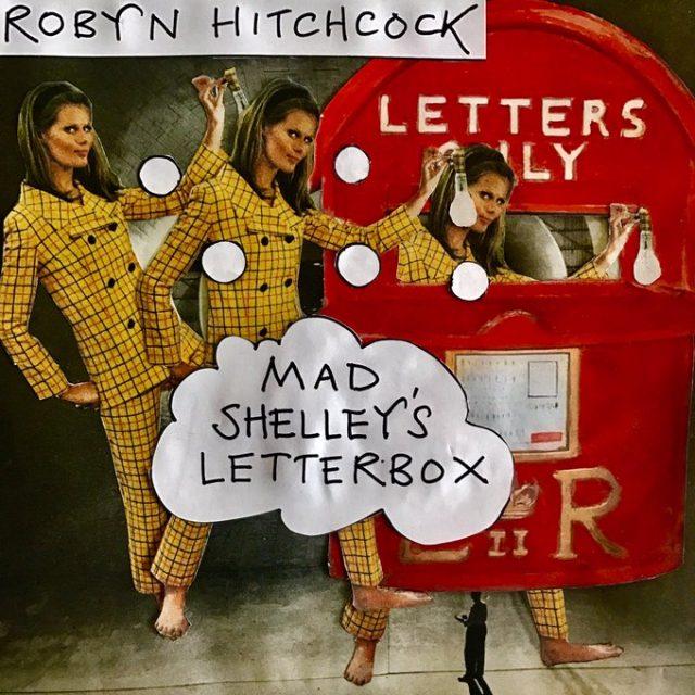 Robyn Hitchcock -
