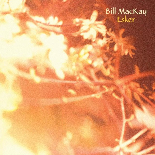 Bill MacKay - Esker