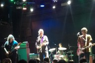 Watch Robyn Hitchcock & Yo La Tengo Cover The Velvet Underground In NYC