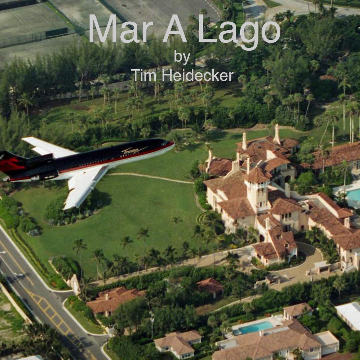 Tim Heidecker Mar A Lago Stereogum