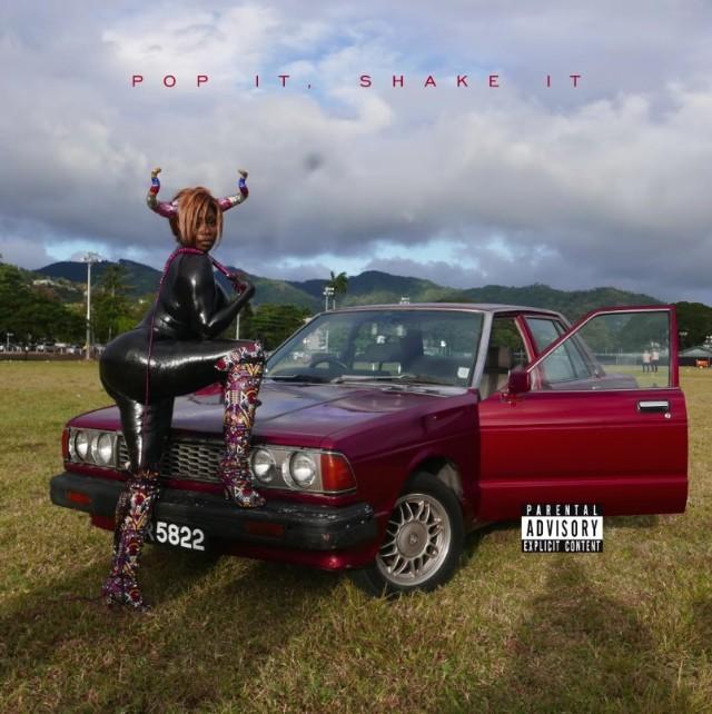 YG-Pop-It-Shake-It-1490967850