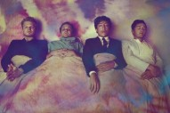 Grizzly Bear Share Cryptic LP5 Teaser