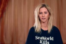 Watch Bully's New Anti-SeaWorld PSA