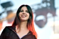 "Lana Del Rey Talks Stevie Nicks Collab ""Beautiful People, Beautiful Problems"""