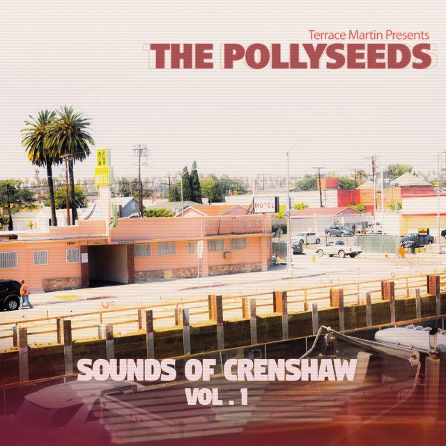 The Pollyseeds -