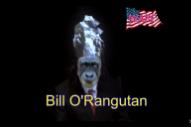 "Watch Todd Rundgren Debut His ""Tin Foil Hat"" Video On Fox News"