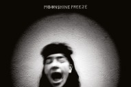 """This Is The Kit – """"Moonshine Freeze"""" (Feat. Aaron Dessner)"""