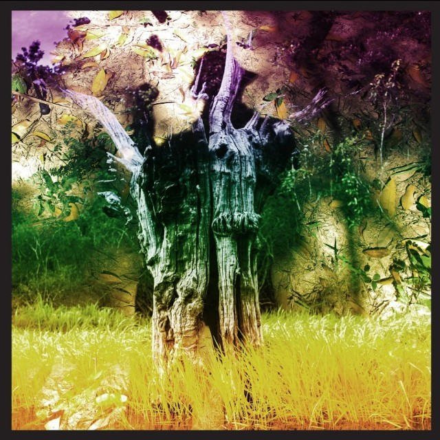 Stream Animal Collective <em>Meeting Of The Waters</em> EP