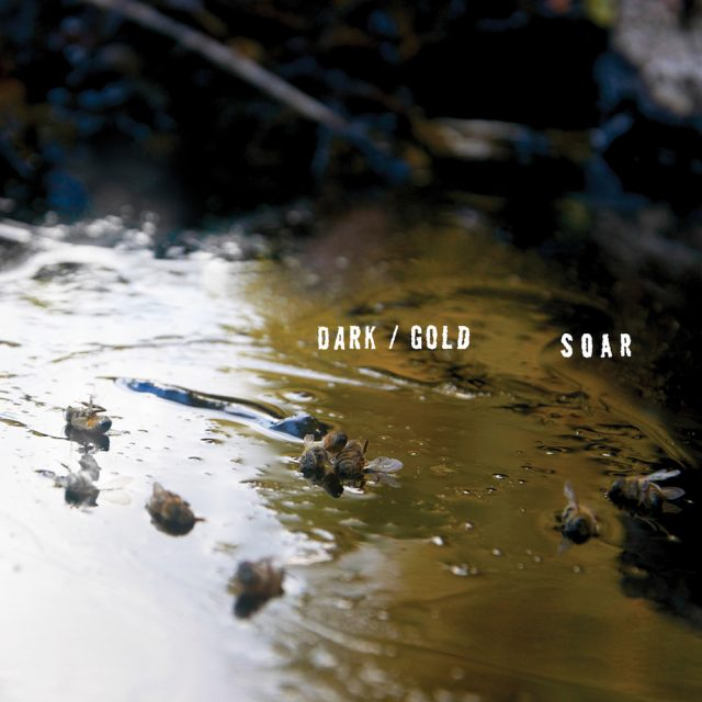 FD060_SOAR_dark-gold-1497364105