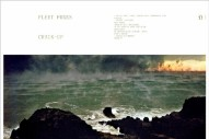 Premature Evaluation: Fleet Foxes <em>Crack-Up</em>