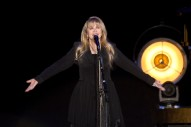 "Stevie Nicks – ""Your Hand I Will Never Let It Go"""
