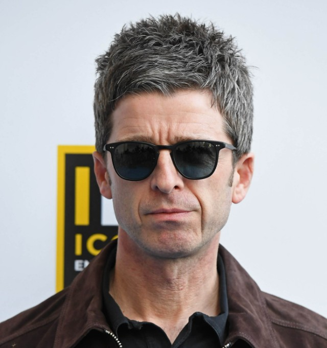 "Noel Gallagher On Harry Styles' Single: ""My Cat Could've ... Liam Gallagher"