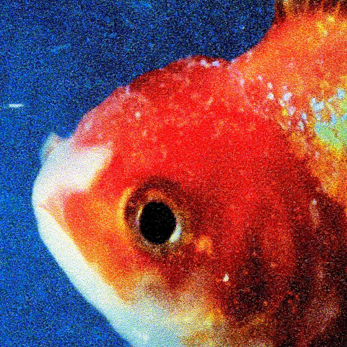 The coloring book chance the rapper download - Vince Staples Rain Come