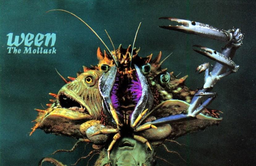 The Mollusk Comedic Music com Music