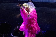 Björk Shares New Album Pre-Order, But No Details Yet