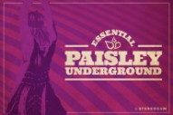 14 Essential Paisley Underground Songs