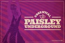 SG-Paisley2-1503500805