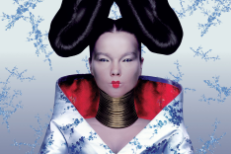 <em>Homogenic</em> Turns 20