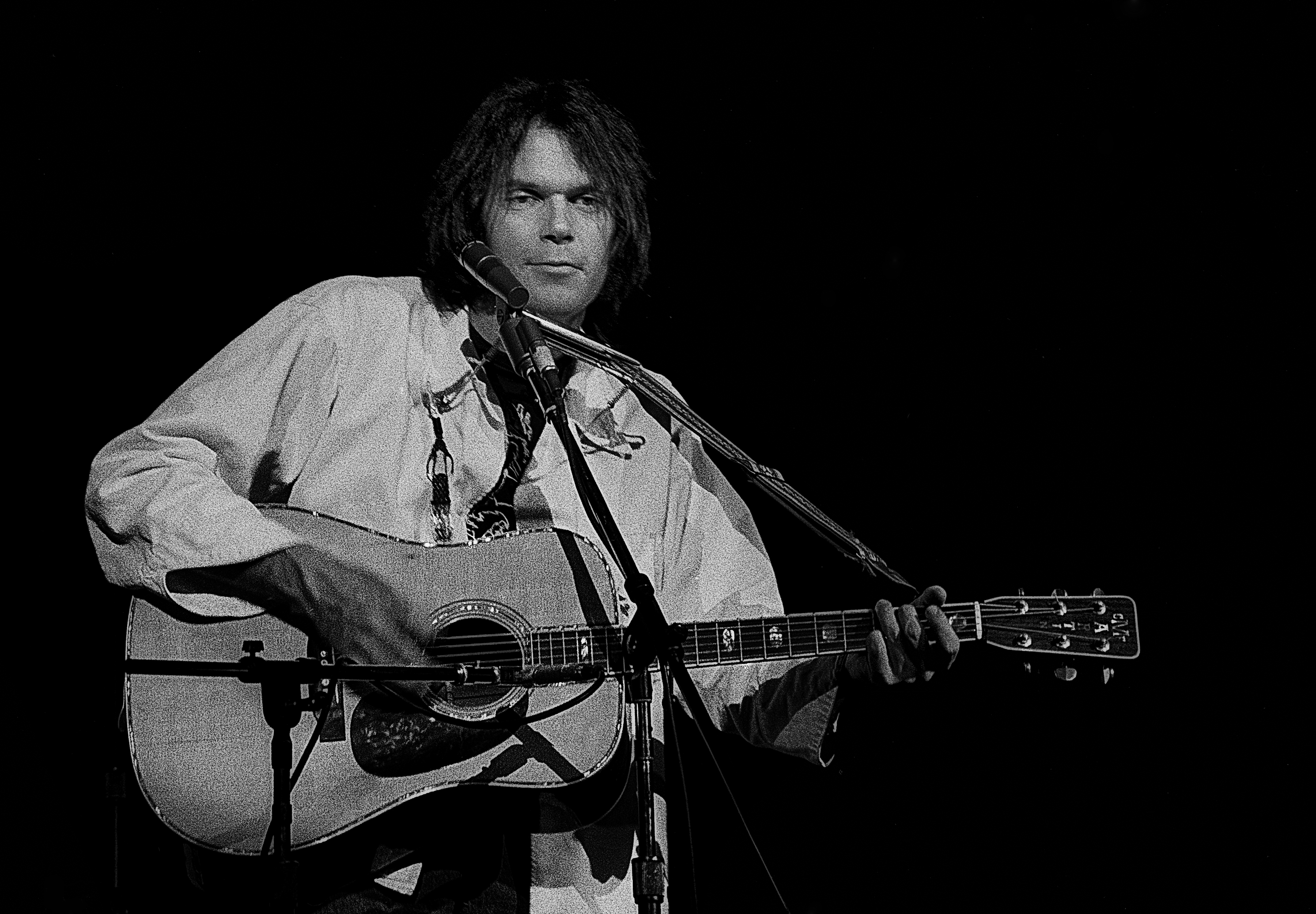 tag neil young bloglikes