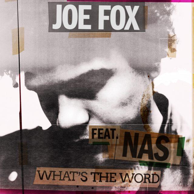 Joe Fox -