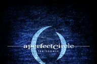 "A Perfect Circle – ""The Doomed"""