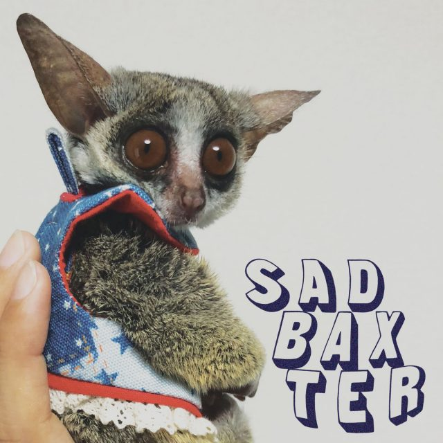 Sad Baxter 7