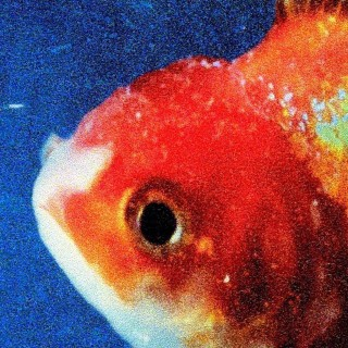 Vince-Staples-Big-Fish-Theory-1511899388
