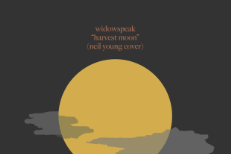 widowspeakneil-1510241029