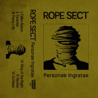 04RopeSect-1513038030