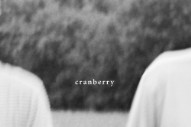 "Hovvdy – ""Cranberry"" Video"