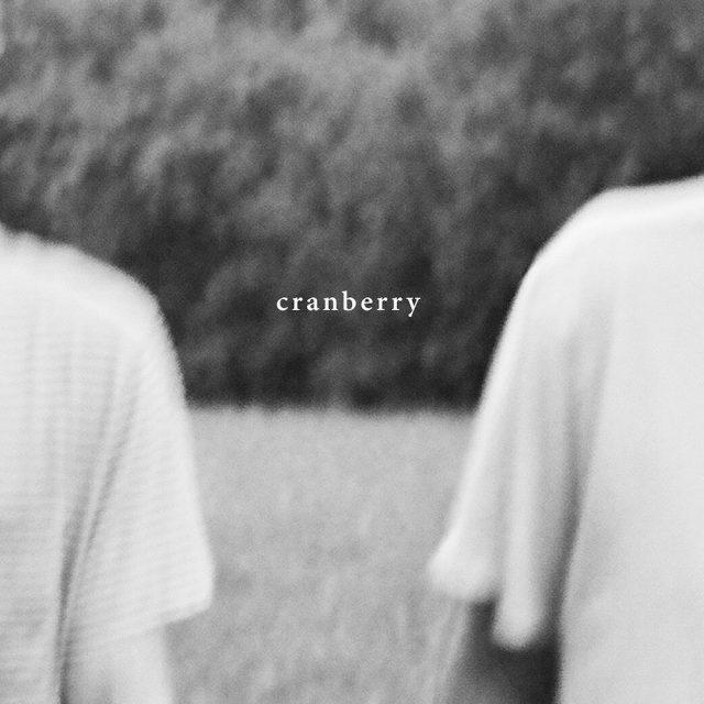 Hovvdy-Cranberry-_-Album-Art-1-1513269984