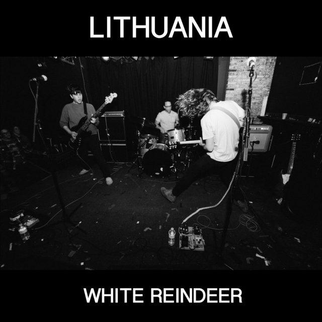 Lithuania - White Reindeer