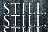 "S. Carey – ""Still, Still, Still"""