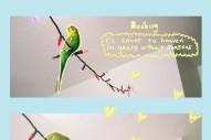 """Bedbug – """"Lilies"""""""