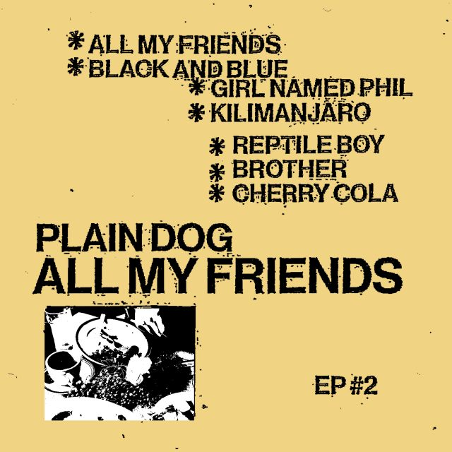 "Plain Dog – ""All My Friends"" - Stereogum"