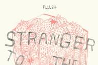 """Pllush – """"Shannon"""""""