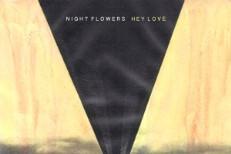 Night Flowers -