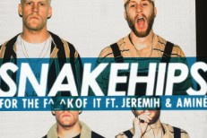 Snakehips -