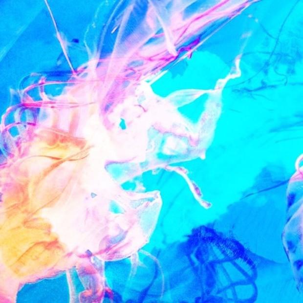 artworks-000311161962-hkk7s2-t500x500-1520285838