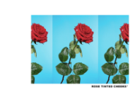 "Tyler, The Creator – ""Rose Tinted Cheeks"""